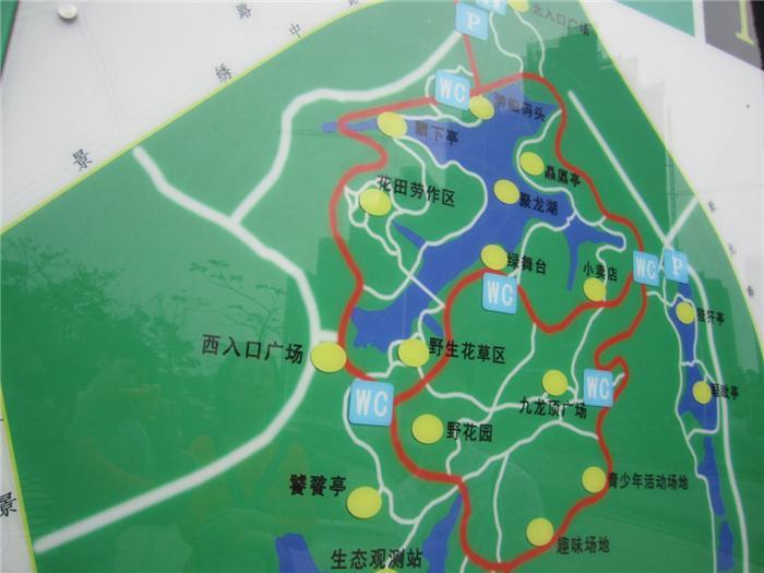 看坪山文体配套:聚龙山生态公园