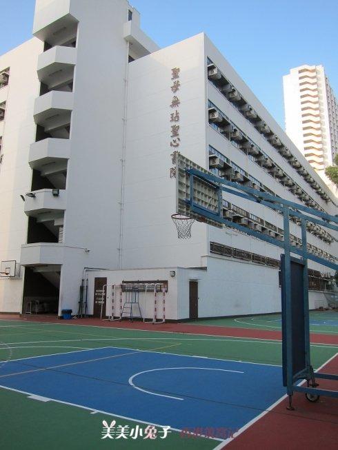 香港 香港攻略  > 沙田区比较好的公立小学一览