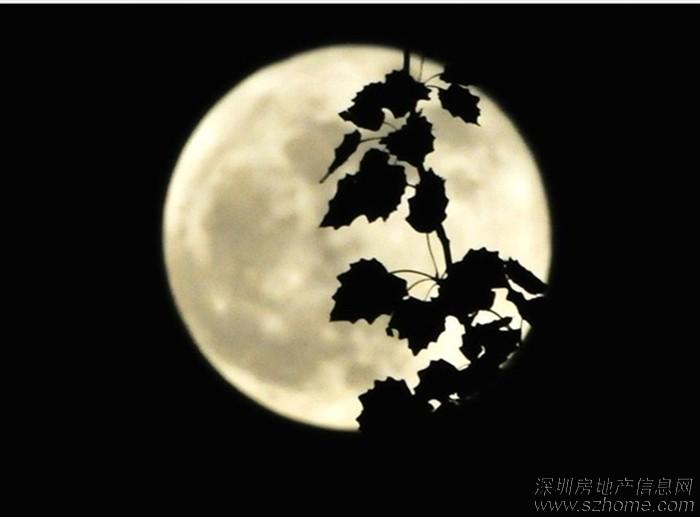 2013年最圆最大的超级月亮高清图片
