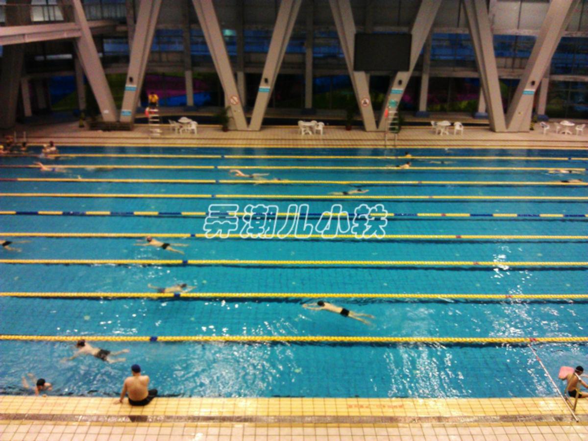 游遍深圳系列一 福田区体育公园游泳馆