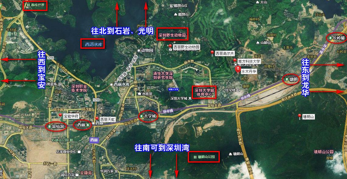 水木丹华在西丽的位置卫星图