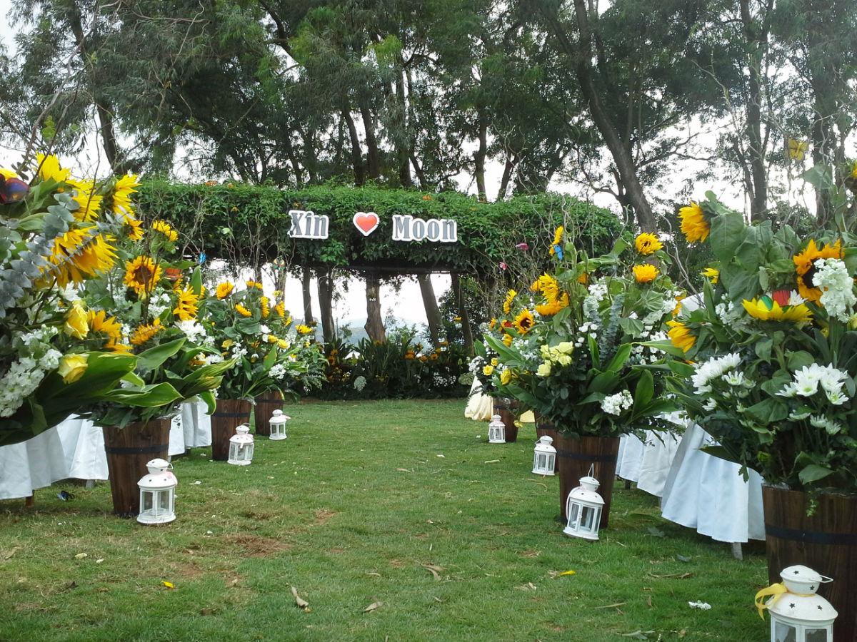 田园风格婚礼——向日葵