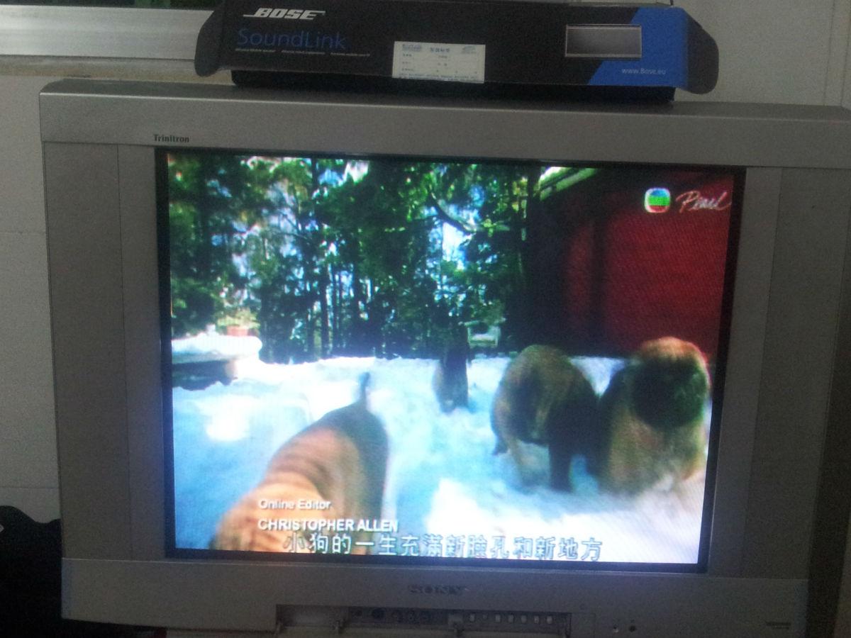 转让部sony特丽珑29寸大电视