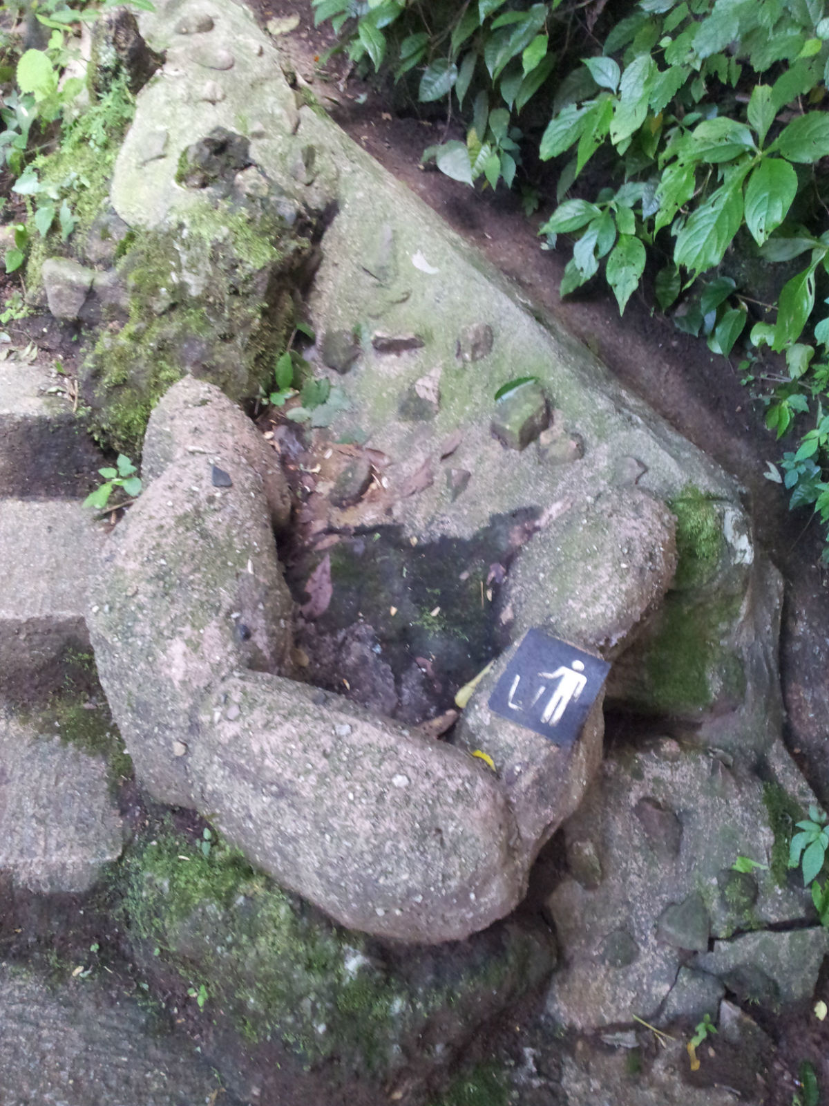 """随处可见这种用石头围成的""""垃圾桶"""