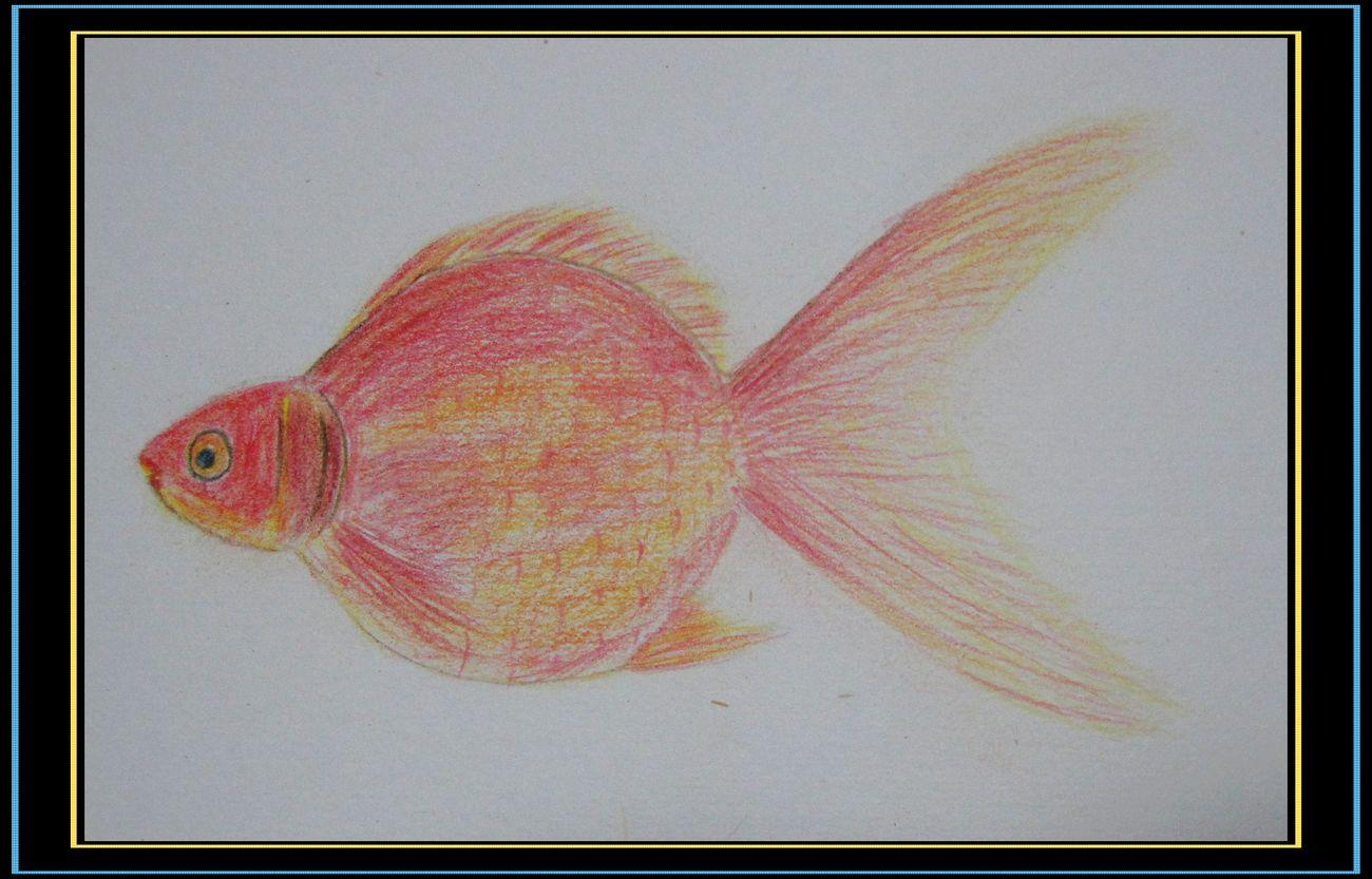 动物好难画呀,用铅笔画