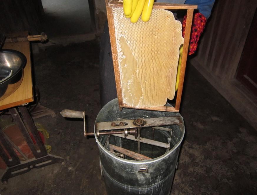 把蜂页放进这个大铁桶
