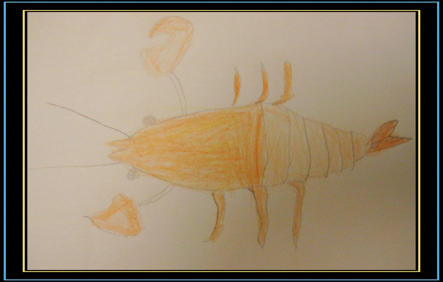 为陪孩子画画,零基础妈妈自学铅笔画(记录贴)