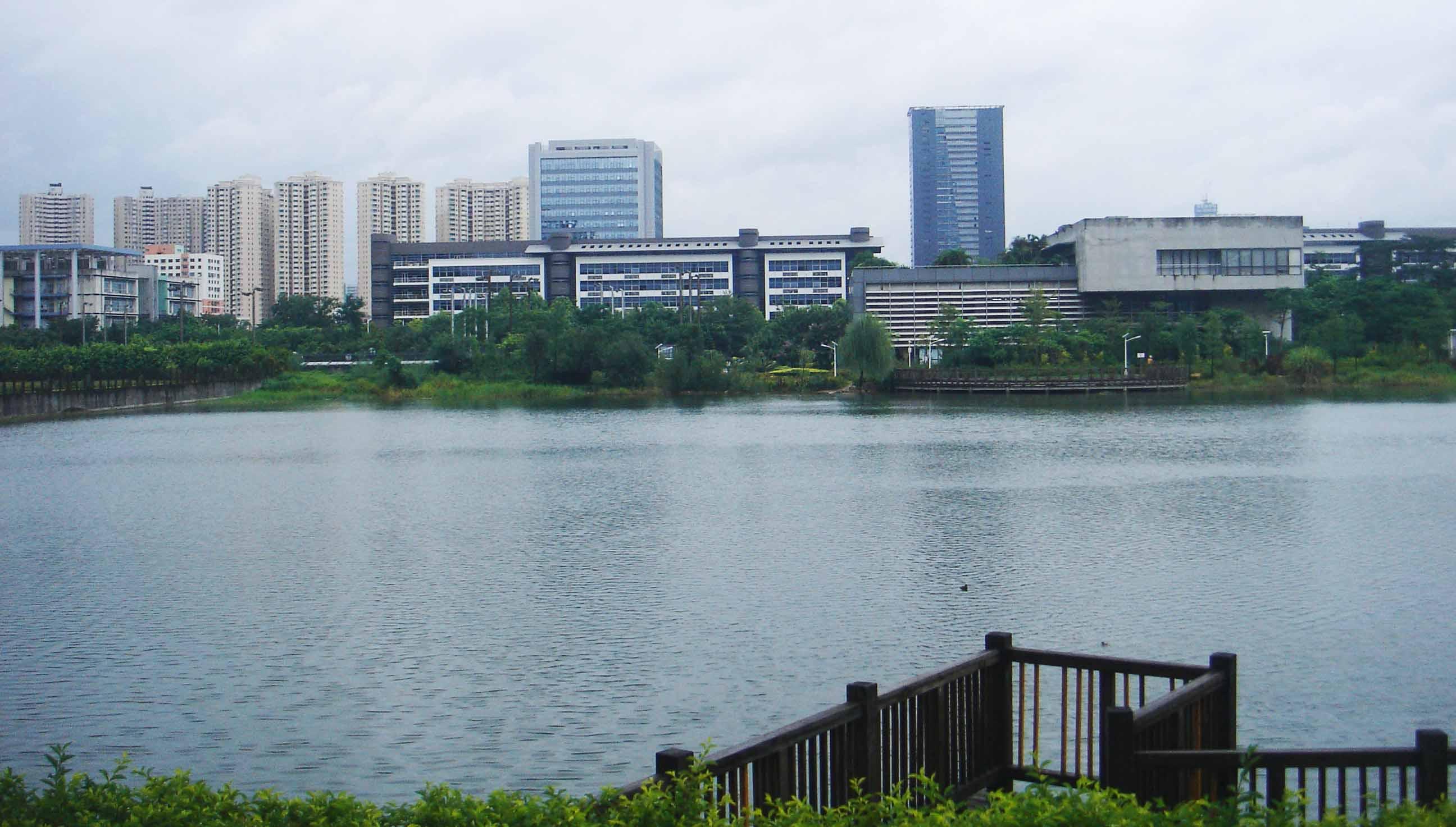 深圳野生动物园 小湖