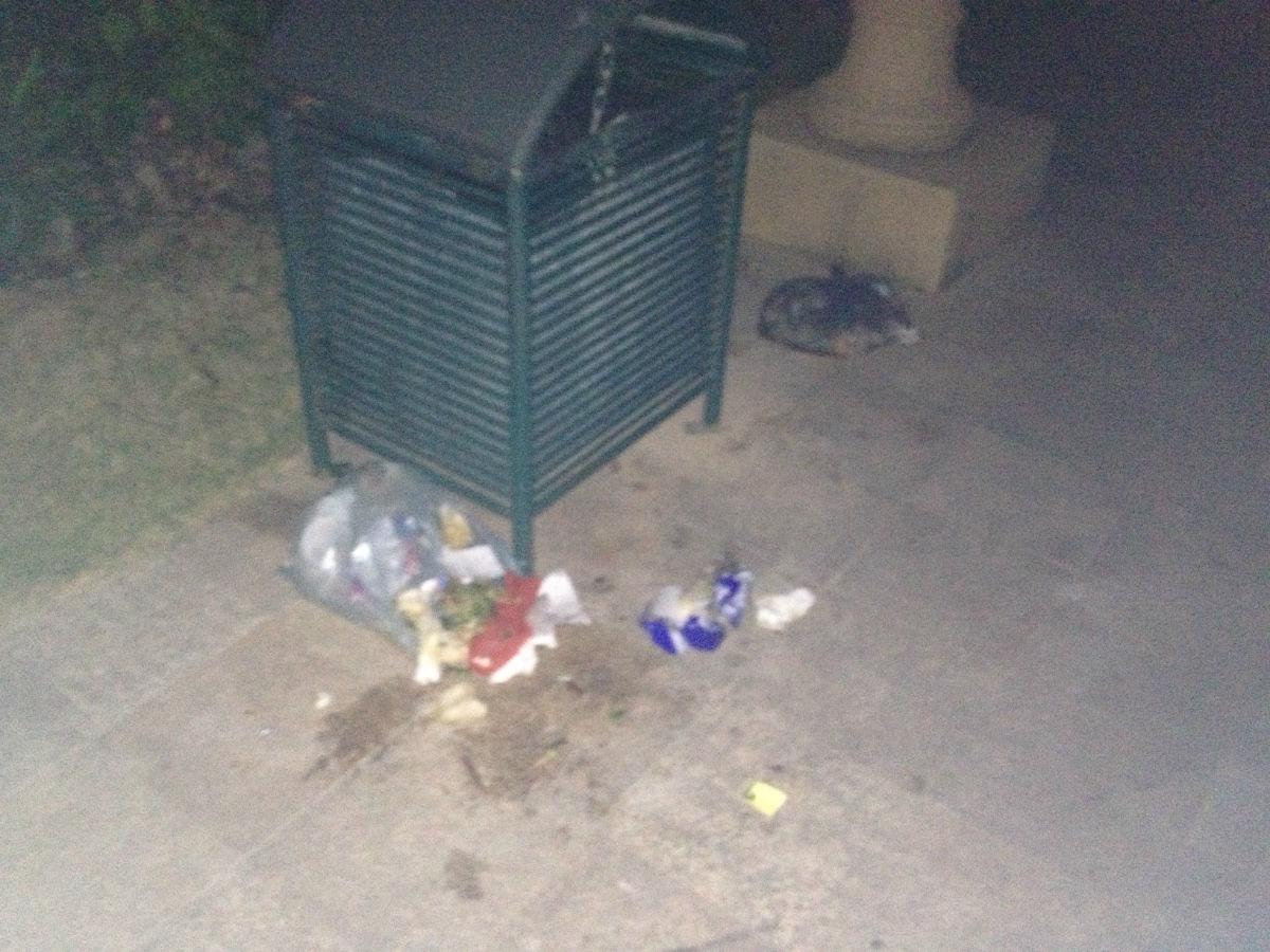 2a的邻居们都喜欢把垃圾直接放在垃圾桶旁边