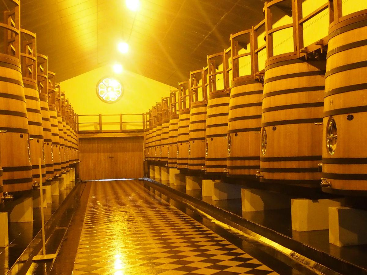 橡木桶哟酿造葡萄酒的