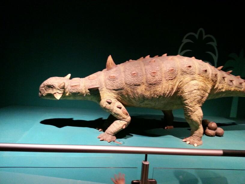 香港最大规模恐龙展---巨龙传奇!