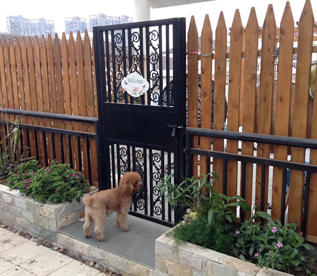 防腐木栅栏也很喜欢.花池里面做了防水,外面贴的文化石.