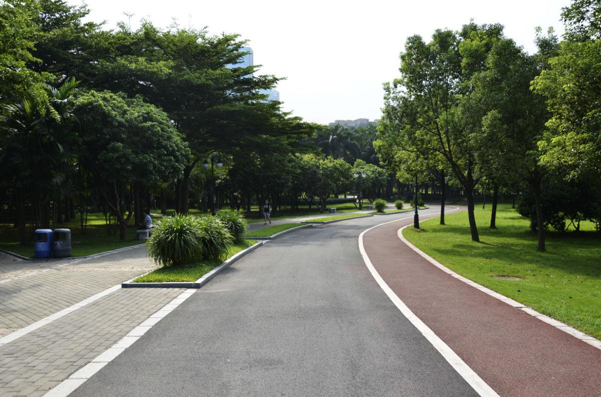 中心公园景区道路.